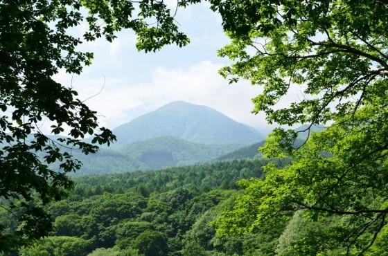 長野県道36号線