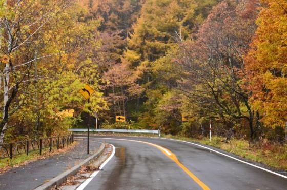 八ヶ岳高原ライン